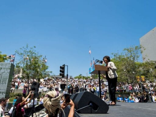 "988397102.jpg.0 Maxine Waters isn't standing down: ""If you shoot me, you better shoot straight"""