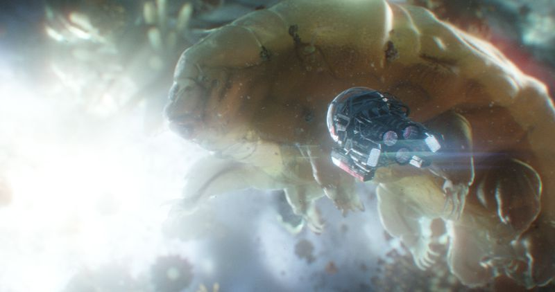 antmantardigrade The folks behind Ant-Man and the Wasp on why Marvel doesn't always have to save the world